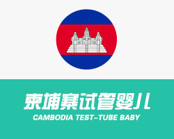 柬埔寨试管婴儿代孕